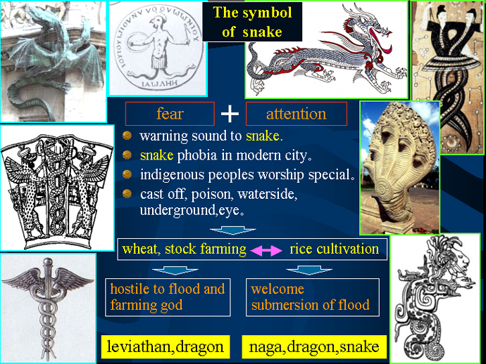 The symbol of a snake : 蛇の表象