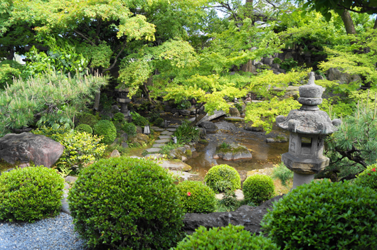 a garden in restaurant